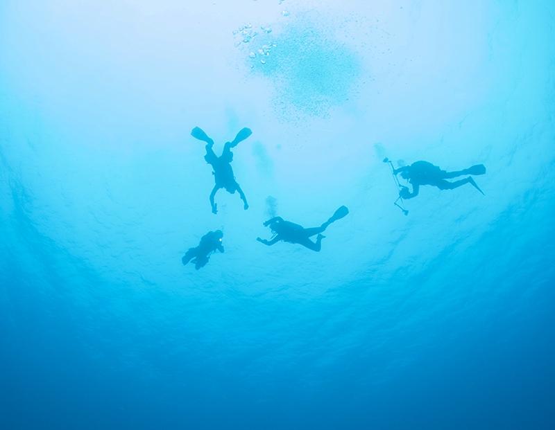 Underwater-306